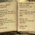 Get All Of Skyrim's Book Bound In One Digital Format