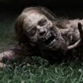Undead Nightmare Trailer Is Horror-ific